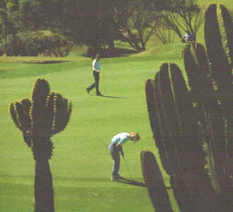 Golf Gran Canaria - Canary Islands
