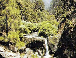 Escorrentías agua Gran Canaria
