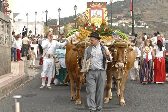 Calendario Romerias Gran Canaria 2020.Romerias En Gran Canaria Las Palmas Canarias